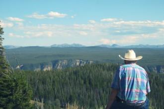 Cowboy Yellowstone USA