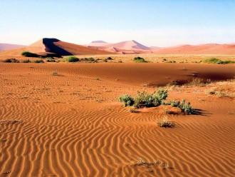 Namib Naukluft Park Dunes Namibia