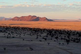 Namibia Panorama mit Giraffen