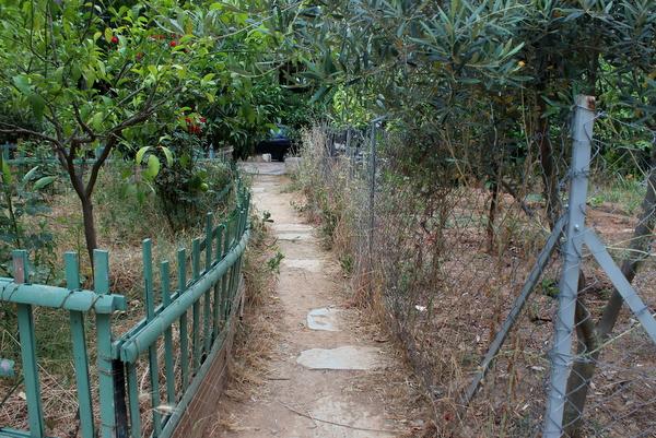 Urban Gardening Exarchia Athen
