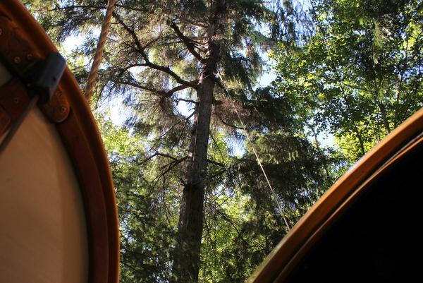 Free Spirit Spheres Baumhäuser im Wald