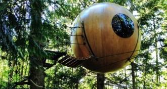 Glamping im Baumhaus Kanada