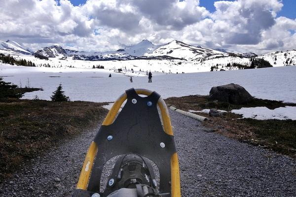 Schneeschuhwandern Banff Sunshine Meadows