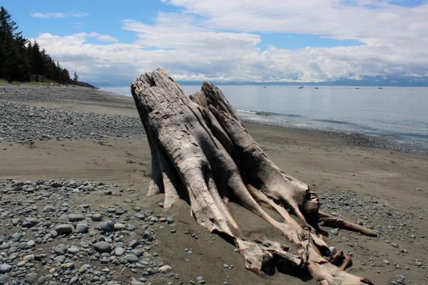Strand Sooke Vancouver Island
