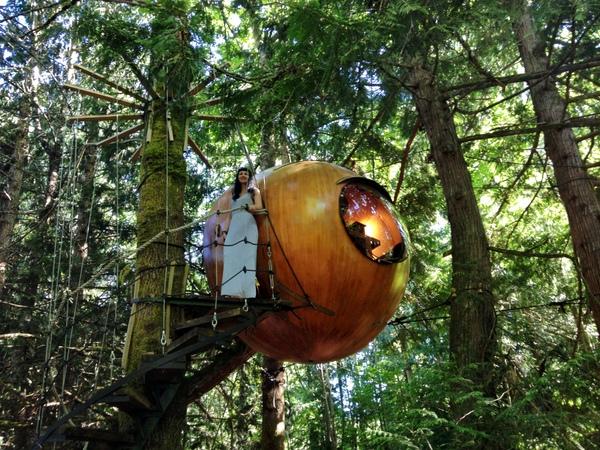 Susi Black Dots White Spots Free Spirit Spheres Kanada Glamping Baumhaus