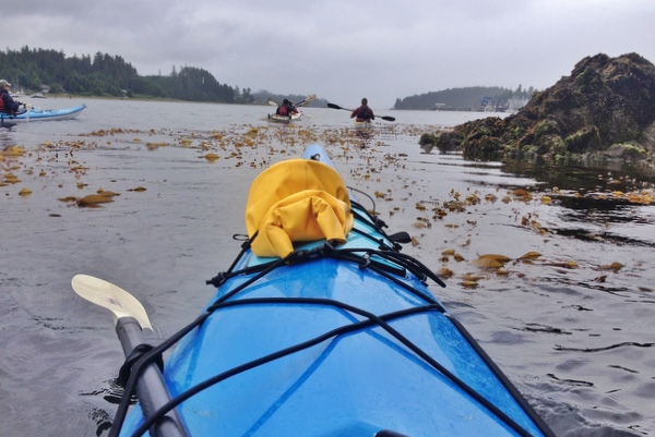 Sea kayaking barkley sound ucluelet pacific rim