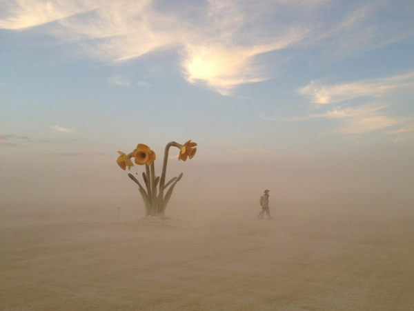 Blume Art Installation Burning Man 2014 Kunst