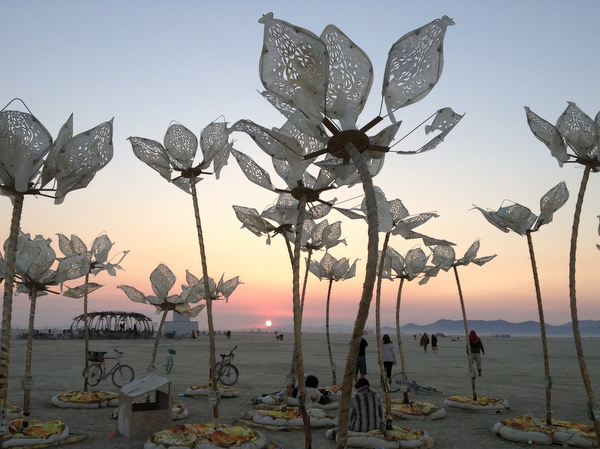 Flowers Art Installation Burning Man 2014