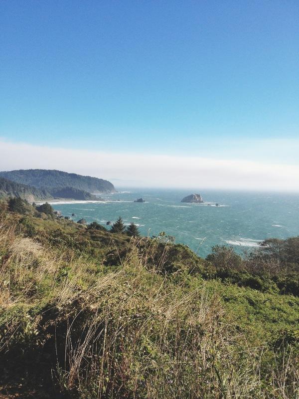 Nordküste Kalifornien Pazifik