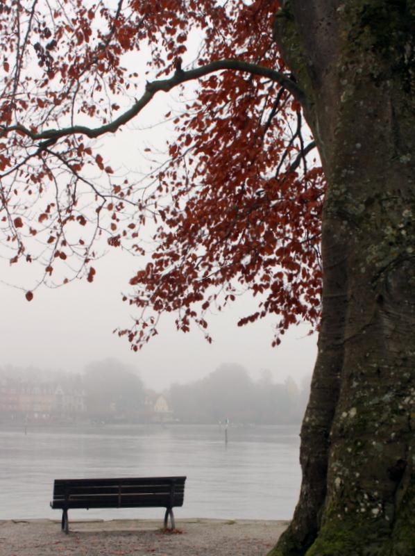 Bodenseeufer Konstanz im Herbst