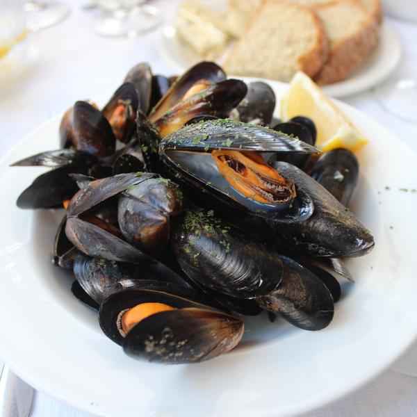 Miesmuscheln Irland kulinarisch