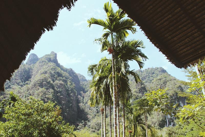 Elephant Hills Camp im Dschungel