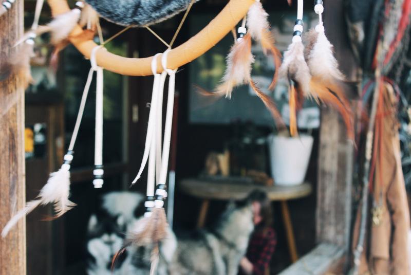 Dreamcatcher Husky Ranch