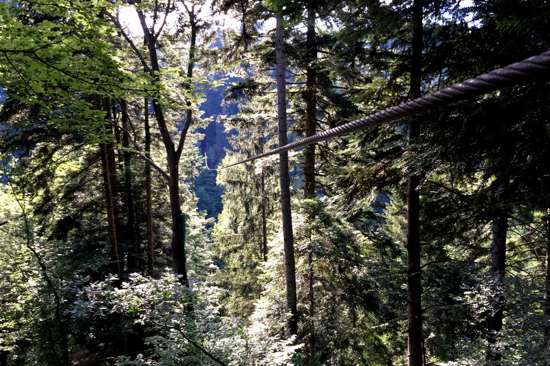 Hirschgrund Zipline Schwarzwald