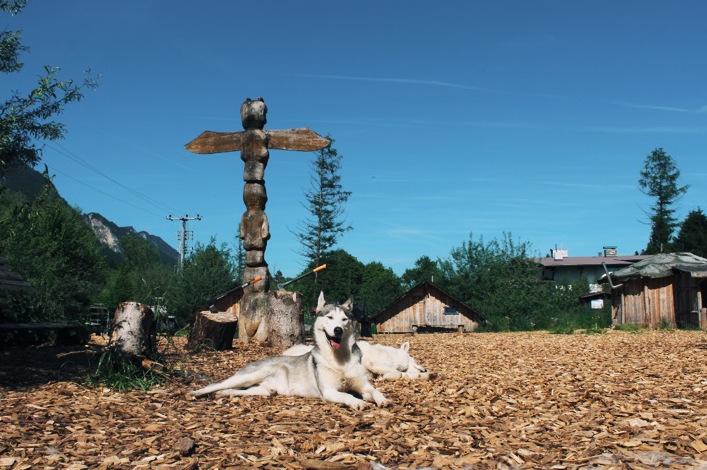Husky Ranch Angerberg Tirol Gelände