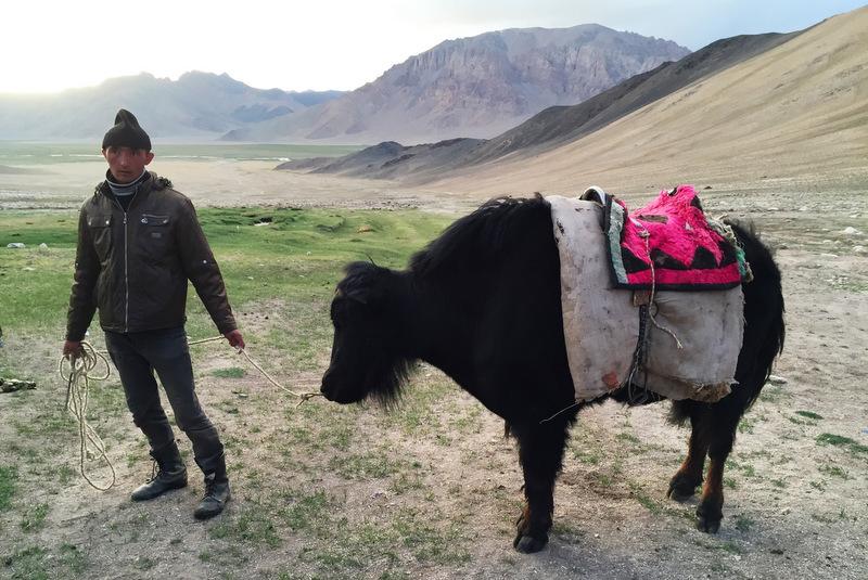 Kirgisischer Hirte mit Yak Baschgumbez Alichur