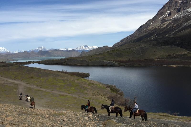 Pferde Torres del Paine Chile