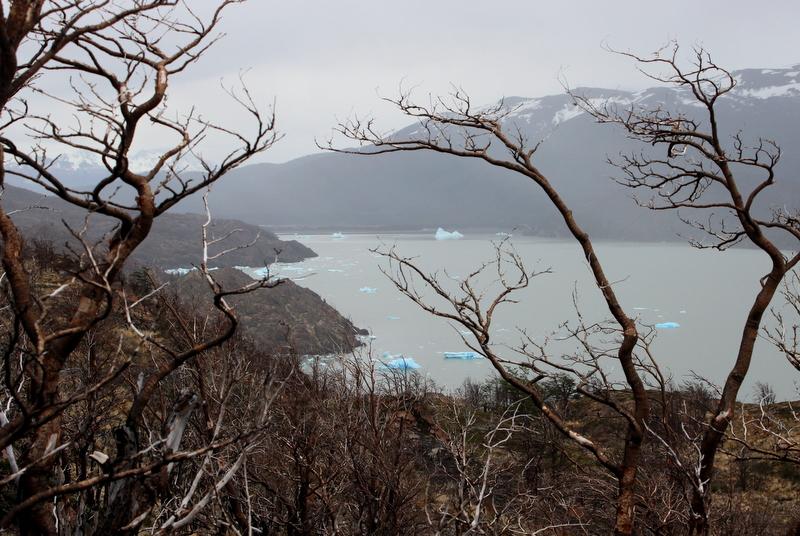 Lago di Grey Torres del Paine
