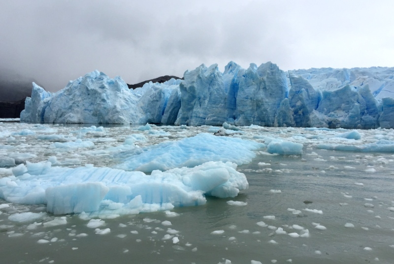 Gletscher See mit Eisbergen Patagonien Grey Glacier