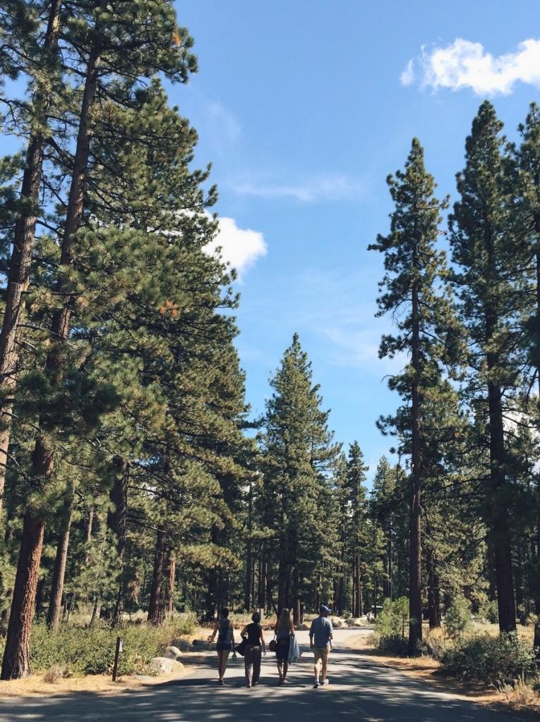 Lake Tahoe Kalifornien Camping