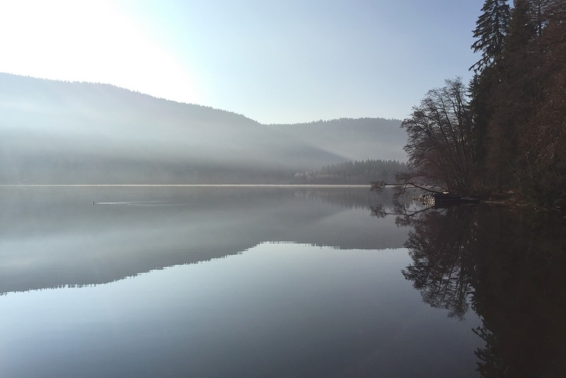Titisee Schwarzwald Winter Sonne