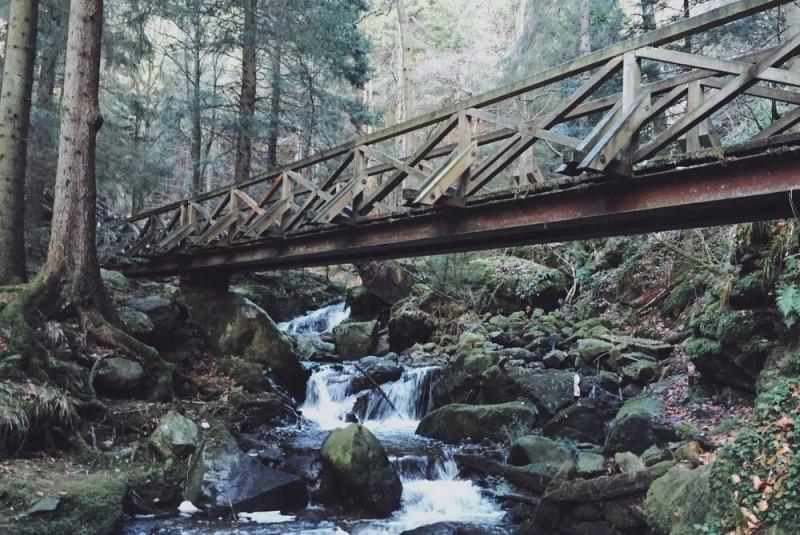 Wanderung Ravennaschlucht Schwarzwald Hinterzarten