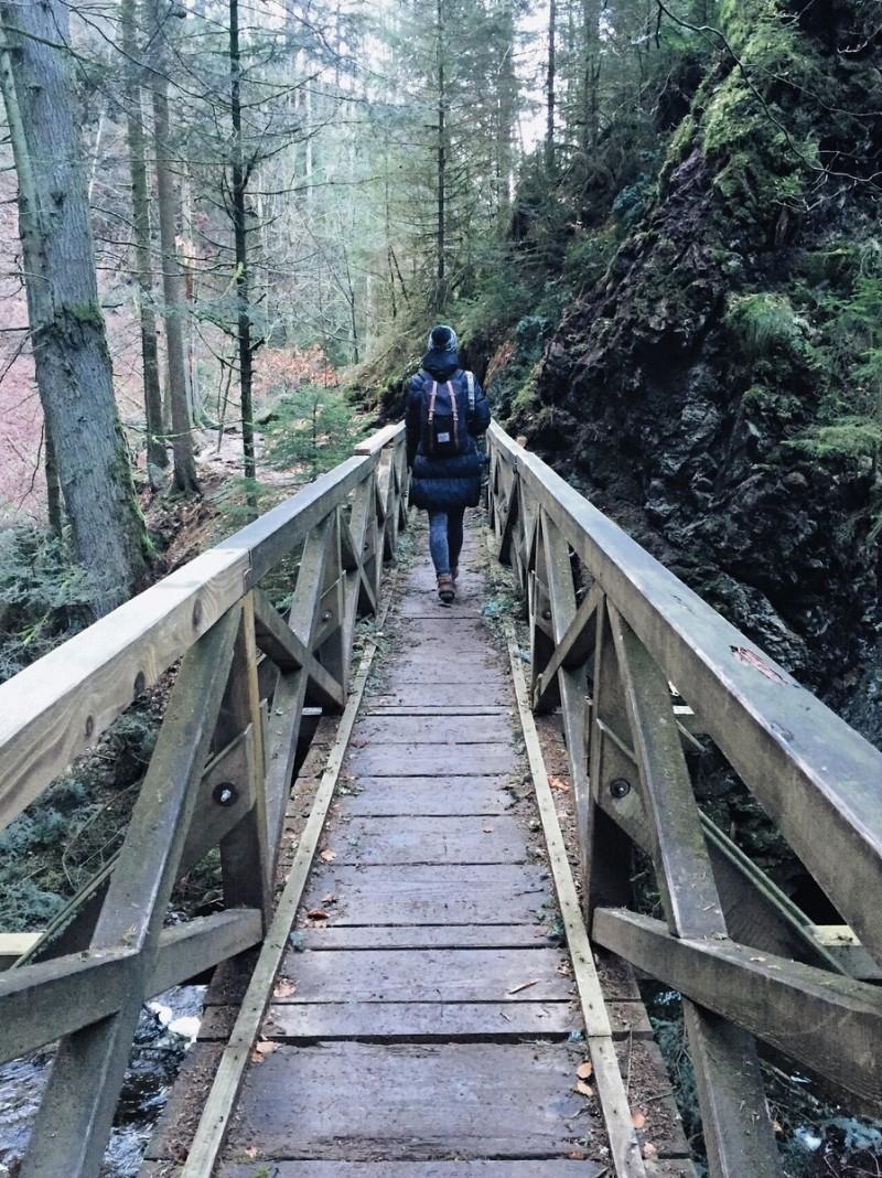Wanderung Ravennaschlucht Schwarzwald Ausflusgtipp