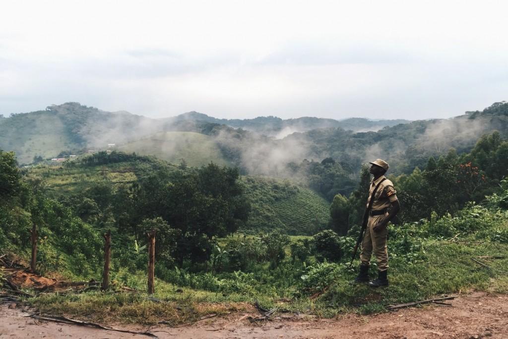 Bwindi Uganda Gorilla Tracking Wache Escort