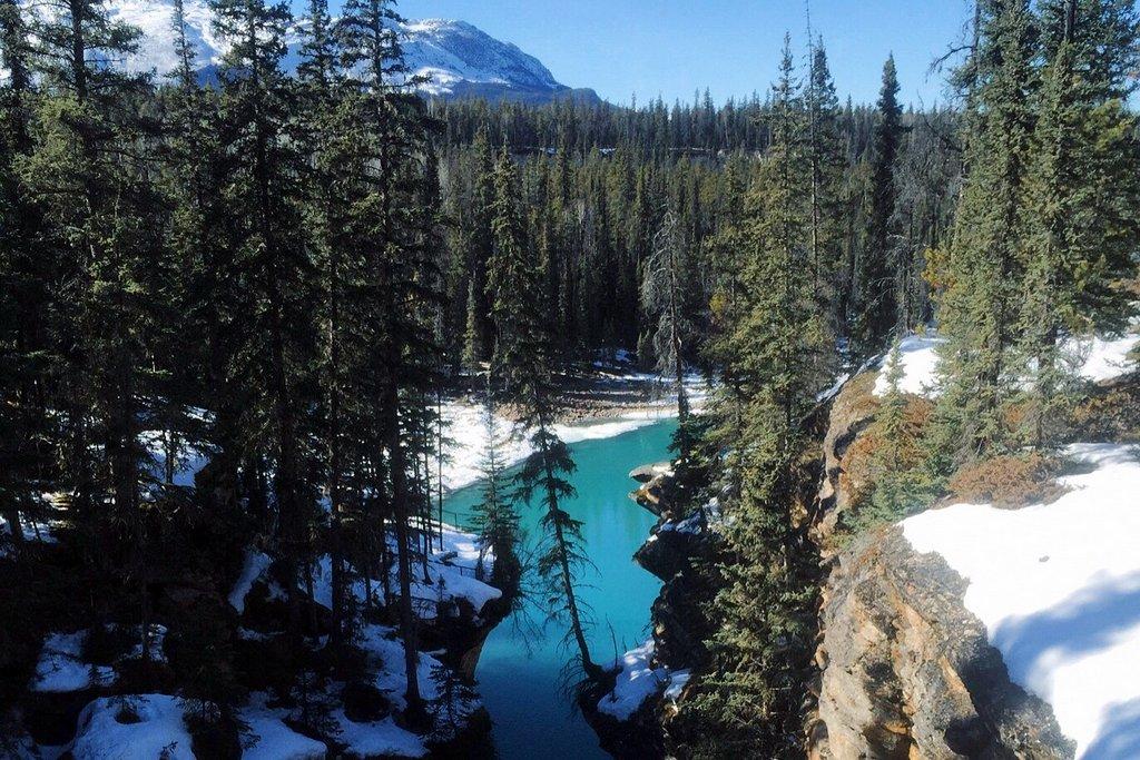 Athabasca Falls Jasper Kanada Winter