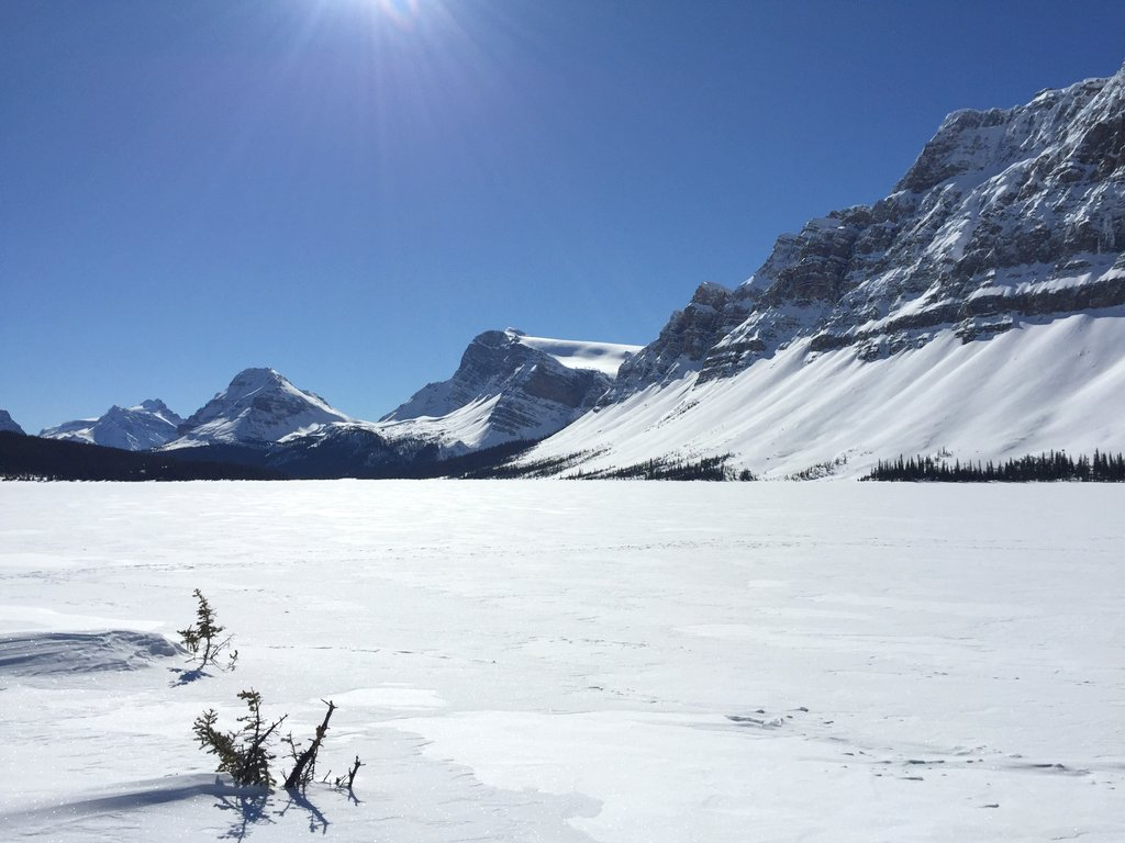 Bow Lake Banff Kanada Winter