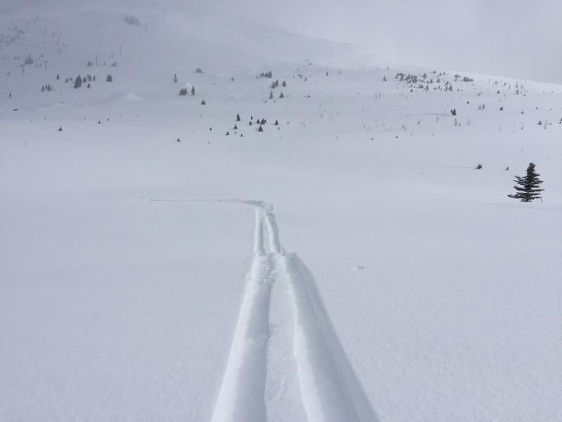 Off Piste Skifahren Pulverschnee Kanada Rockies Banff