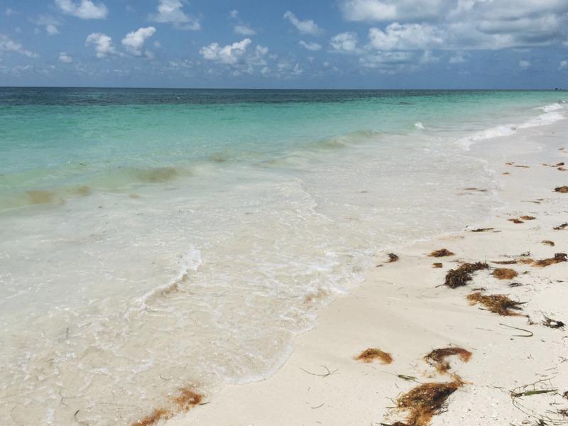 Bahia Honda Stete Park Strand Florida Keys