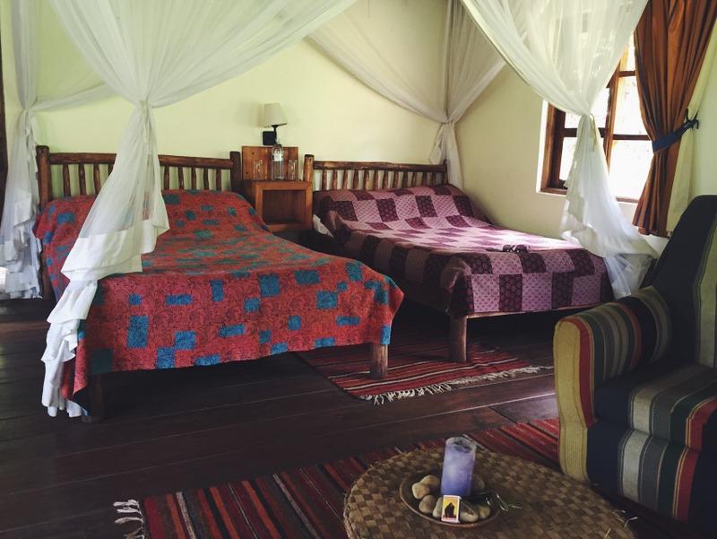 Bwindi Lodge Uganda