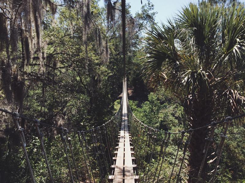 Hängebrücke Zipline Ocala Florida Outdoor Adventure Aktivurlaub Aktivitäten Tour Action Tipps