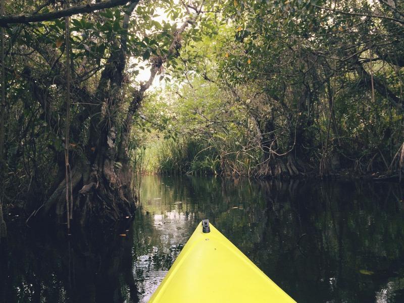 Kajaktour Everglades Florida