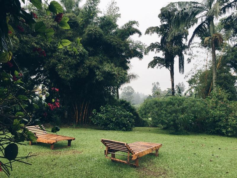 Rwenzori Guesthouse Fort Portal Uganda
