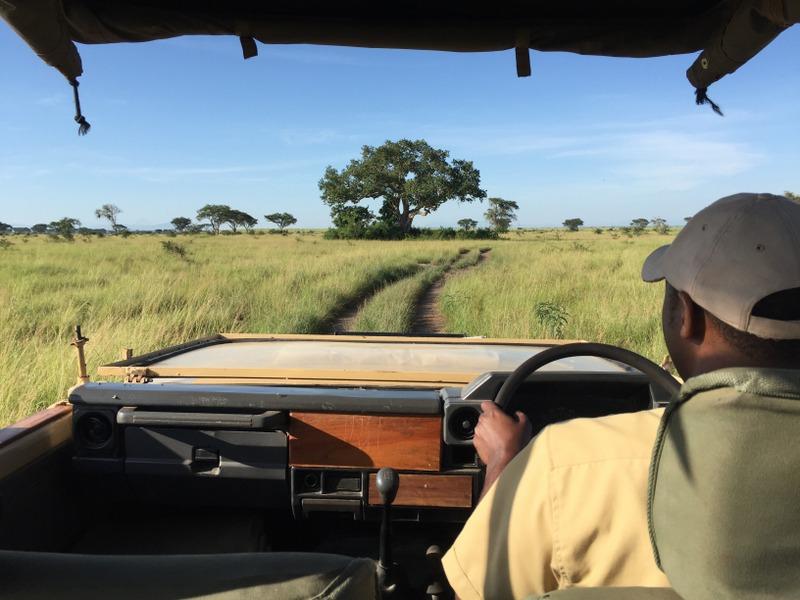 Safari Queen Elizabeth Nationalpark Ishasha Uganda