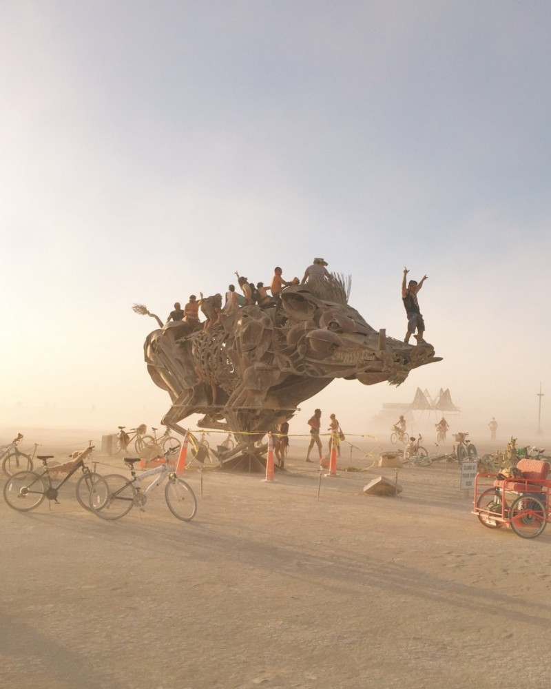 Schwein Boar Kunstinstallation Burning Man 2016