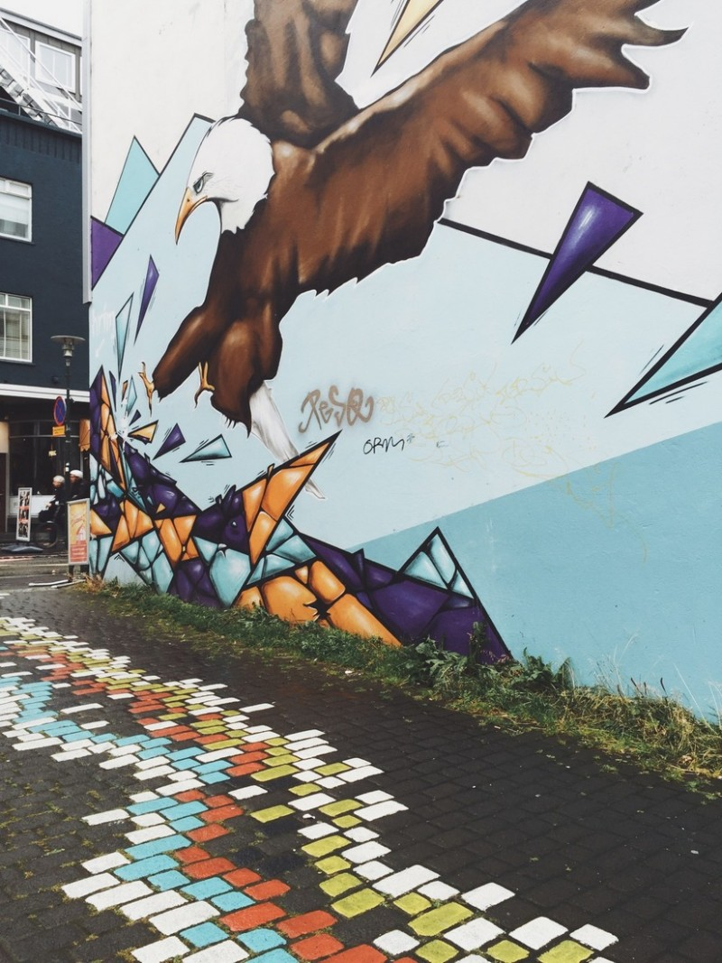 Mural Streetart Reykjavik Laugavegur Vogel