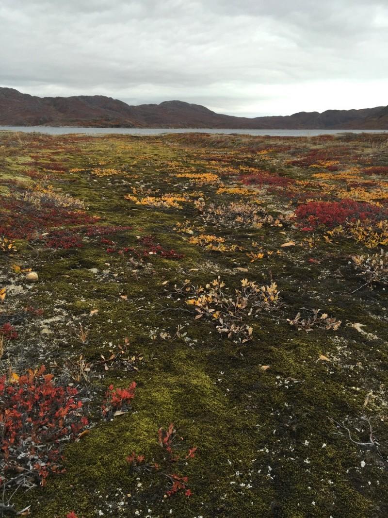 Herbst wandern Groenland