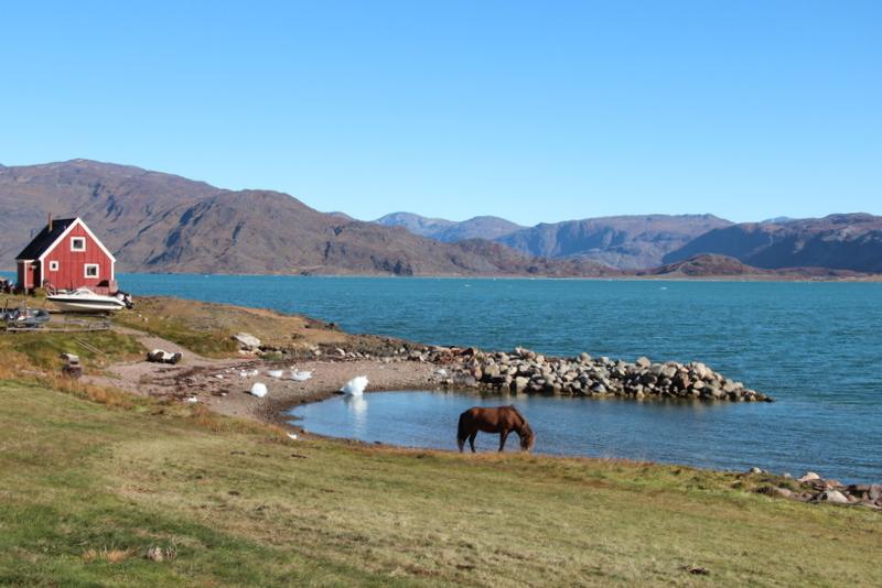 qassiarsuk-groenland-sommer-reise