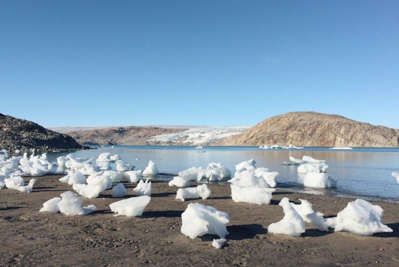 Strand mit Eisbergen Grönland