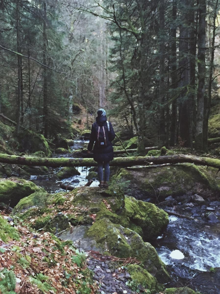 Wandern Schwarzwald Höllental