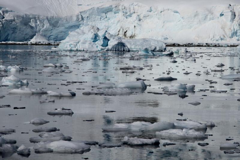 antarktis-gletscher-eisschollen-im-meer