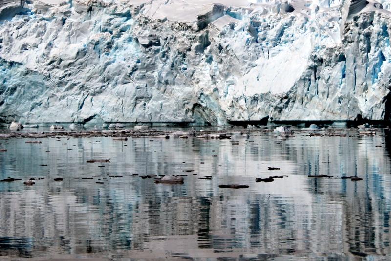 gletscher-antarktis-cuverville-island-spiegelung