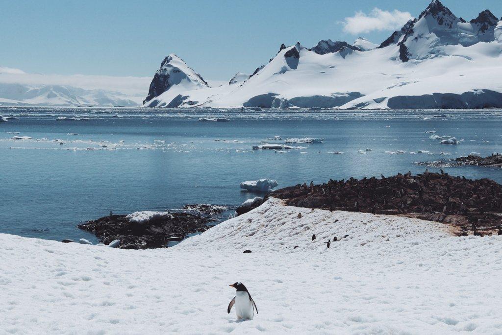 Reisen im Winter - Antarktis