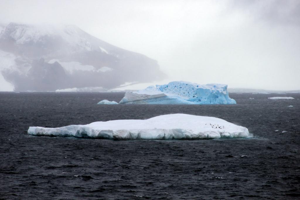 Antarktis Suedliche Shetlandinseln Eisberg