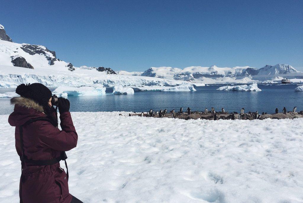 Antarktis Pinguine beobachten Swarovski Companion SL Fernglas