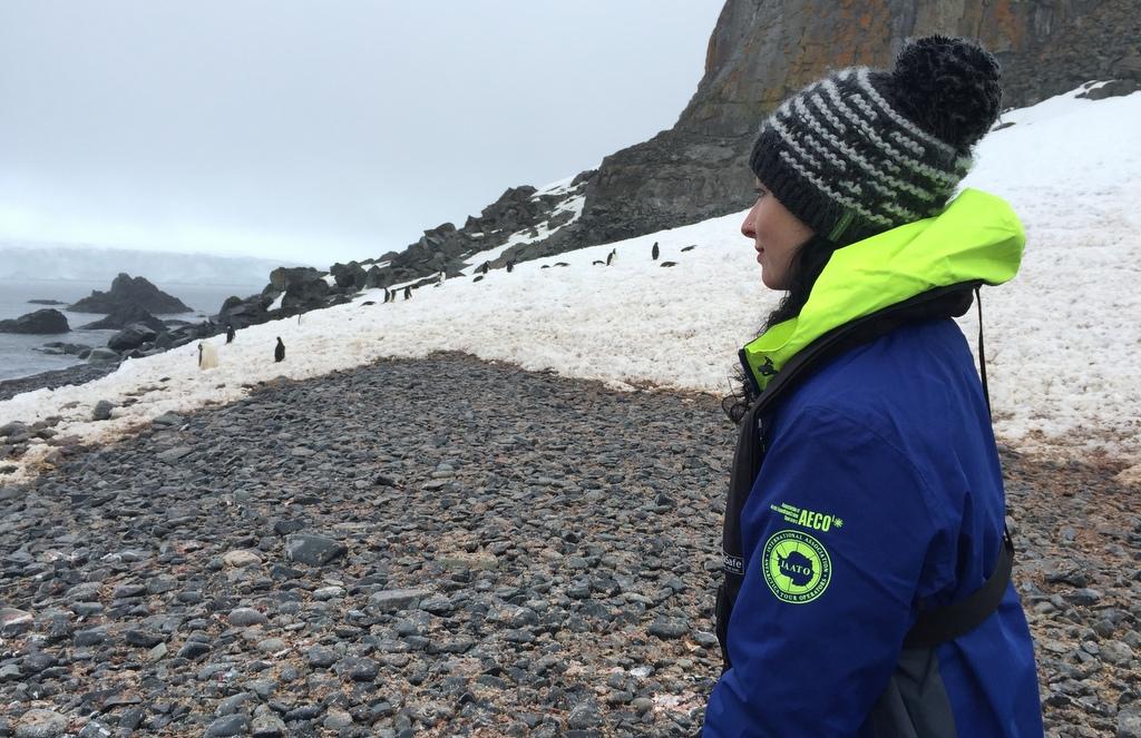 Half Moon Island Antarktis Kaiserpinguin