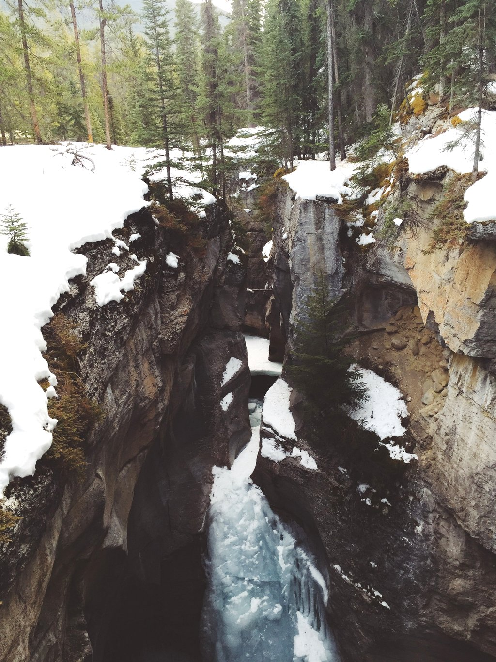 Maligne Canyon Jasper Winter Kanada